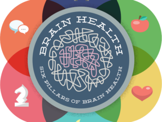 Brain Health pillars