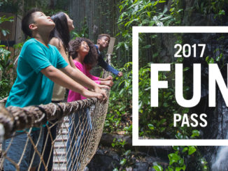 Kids at an attraction available through the fun pass 2017